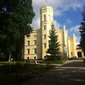 Pałac w Mierzęcinie